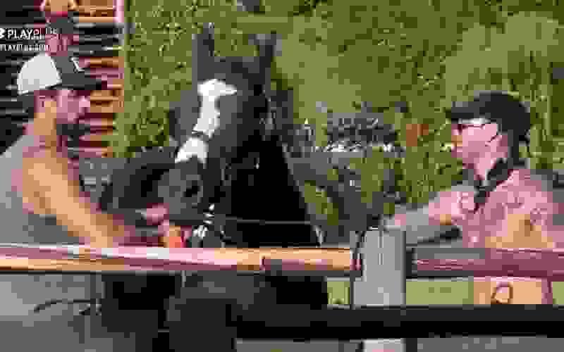 Gui Araujo ajuda Erasmo Viana a pentear o cavalo Colorado - A Fazenda 13